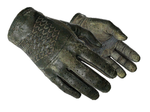 ★ Driver Gloves | Racing Green (Battle-Scarred)