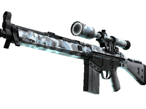 G3SG1   Arctic Camo (Field-Tested)